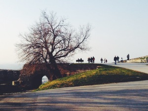 Beograđani gather at their city's first inhabited spot, a fort named Kalemegdan, at the convergence of the Danube and Sava rivers. Image by author.