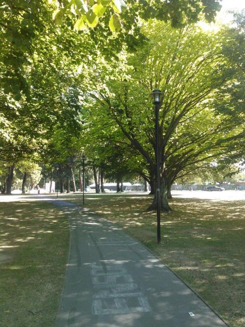 20170223-campus-walkway
