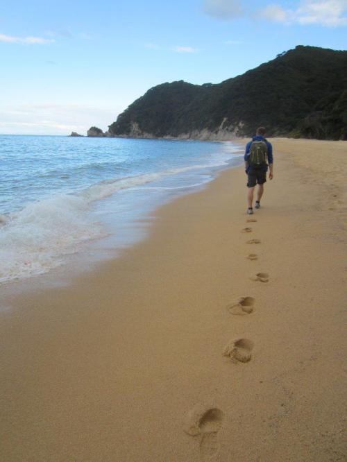 20170420 Abel Tasman Coast Track (2)
