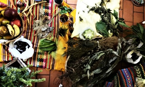 spread of traditional healing herbs2