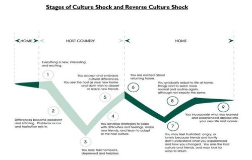 Culture shock and reverse cultureshock graph
