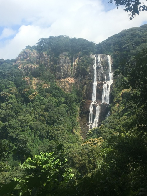The view from my SanjayWaterfalls hiking trip