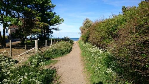2 walk to the beach